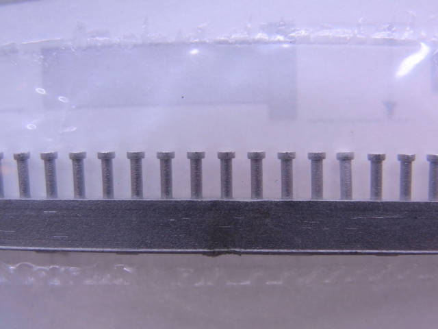 P1010-2.JPG