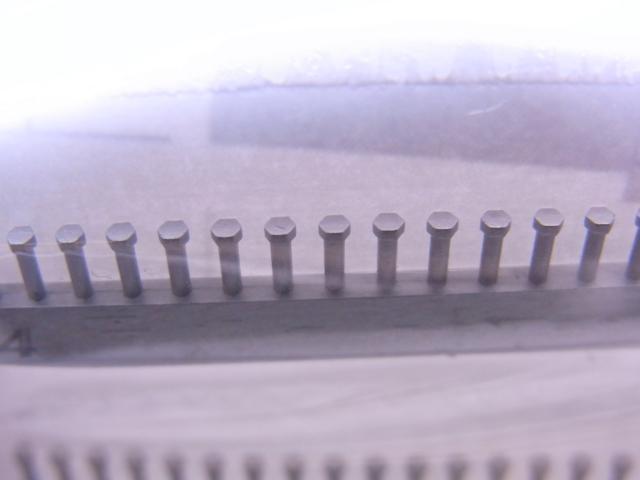 P1011-3.JPG